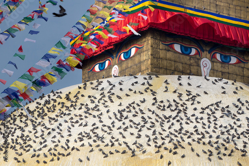 Boudhanath Stupa and birds