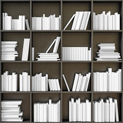 bookshelves with  books