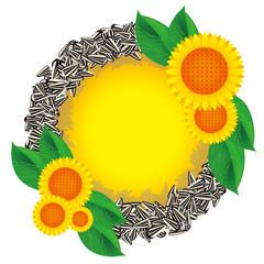 向日葵と種