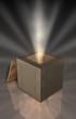 Kiste Holz NF