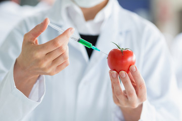Scientist injecting a tomato