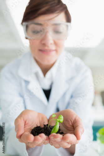 Woman holding a little plant with soil