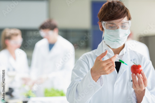 Woman injecting liquid in tomato while doing research
