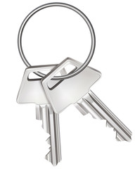 Keys isolated on white. Vector illustration