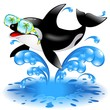 Killer Whale Cartoon with Sunglasses-Orca Con Occhiali da Sole