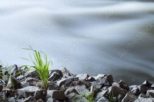 River on the white background