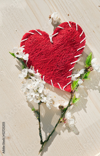 spring flowers and red woolly heart