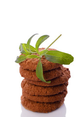 stevia rebaudiana as sweetener for cookies