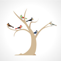colorful birds in a tree