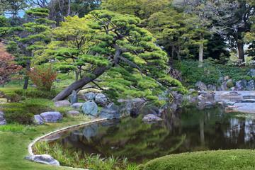 Japanese Garden Tokyo