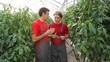 Two Farmers Holding Green Peppers