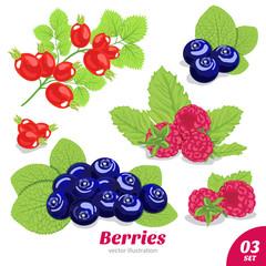 Set of berries from blueberries, raspberries