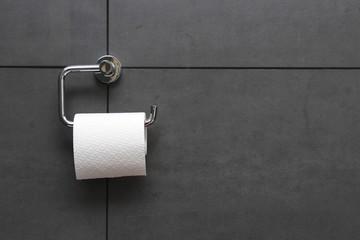 Toilettenpapier01