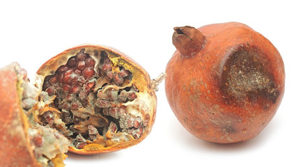 rotten pomegranate on white