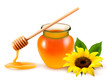 Jar of honey and a dipstick with yellow flower. Vector illustrat