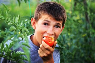 Biss in die frisch gepflückte Tomate