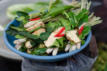 """Set of tropical herb and ingredient prepared of cooking """"Tom Yam"""