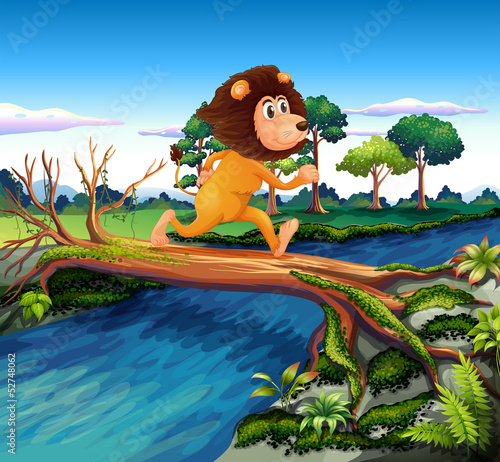 A lion running while crossing the river