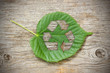 Green leaf with recycle symbol