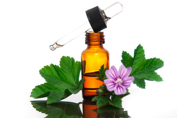 Malva Sylvestris with essential oil bottle