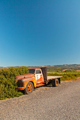 Old rusty pickup truck standing in winery landscape with blue sk