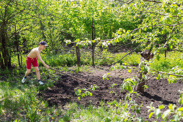 Boy in red shorts helps to cultivate the land rake