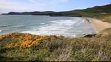 Whitesands Bay Pembrokeshire Wales