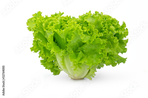 Green salad isolated