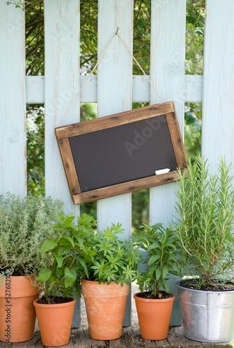 Chalkboard, fresh herbs