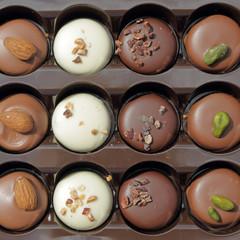 assorted belgian chocolate pralines in box