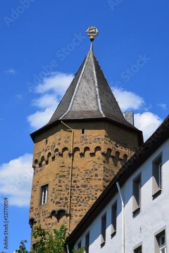 Burg Linz