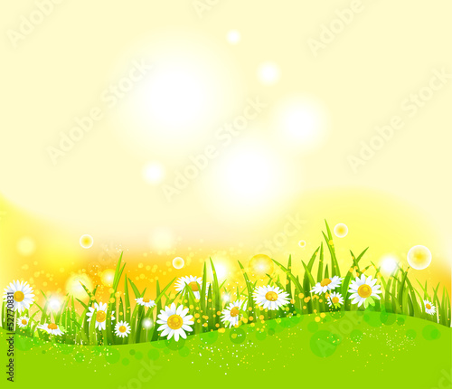 Bright summer background