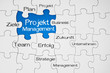 Puzzle in Blau mit Projektmanagement