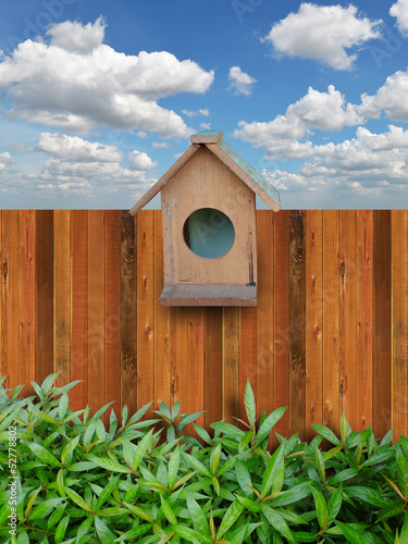 Hedges with a wooden fence