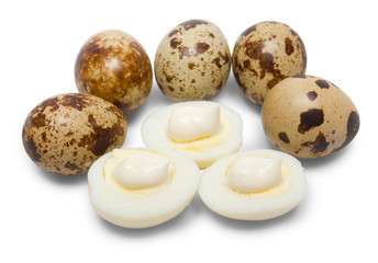 Eggs of quail
