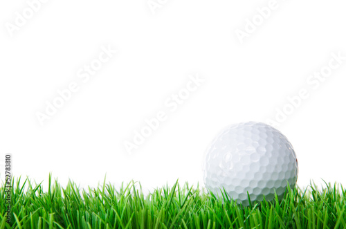 golfball in wiese