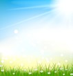 grass background with grass and light effects