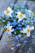 forget-me-not and narcissus flowers