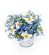 forget-me-not and narcissus flowers over white