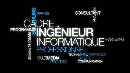 Ingénieur informatique management word tag cloud video