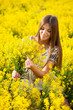 Girl gathers a bouquet of yellow wildflowers