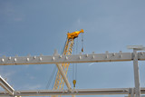 Steel girder construction and crane