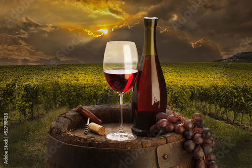 still life with red wine on vineyard
