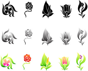 set of floral in silhouette and colorful design