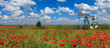 Oil and gas well in rural countryside with poppy field - 52806215