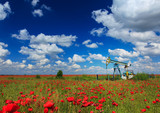 Oil and gas well in rural countryside with poppy field