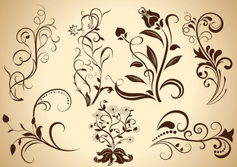 Floral vintage vector design elements isolated
