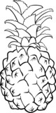 pineapple fruit for coloring book