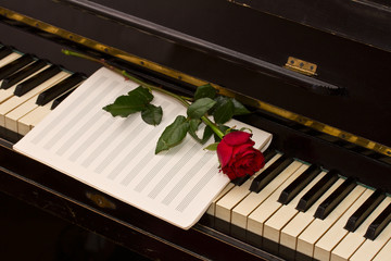 notes paper with one red rose