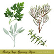 Parsley, Garden Sage Rosemary English Thyme, Classic herb blend